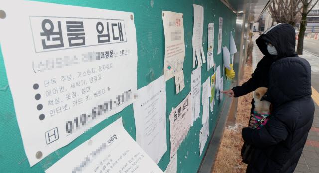 ▲ 새 학기를 앞둔 19일 춘천교대 학생들이 게시판에 붙은 원룸과 하숙집 전단지를 보고 있다.  방병호