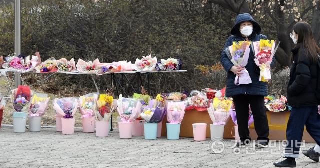 ▲ 21일 강원대 춘천캠퍼스에서 한 상인이 꽃을 판매하고 있다. 강원대는 코로나19 확산 방지를 위해 이날로 예정됐던 졸업식을 취소했다. 최유진