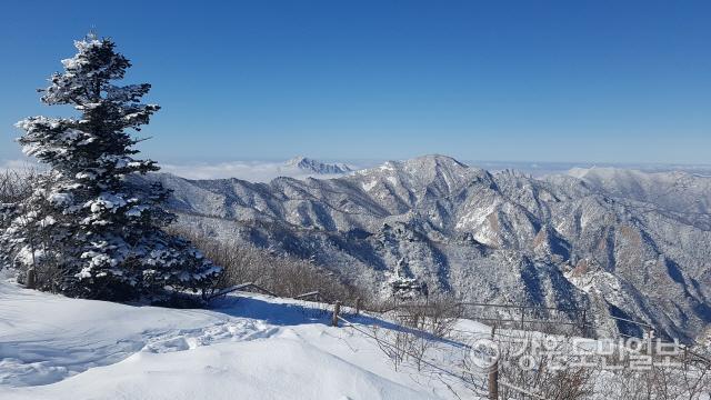 ▲ 27일 설악산국립공원 일원에 많은 눈이 내려 멋진 설경을 뽐내고 있다.(사진제공=설악산국립공원사무소)