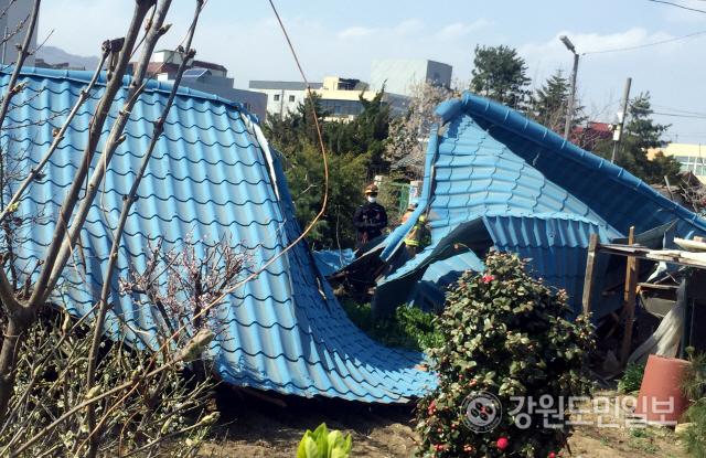 ▲ 19일 오후 2시쯤 동해시 송정동에서 주택 지붕이 강풍에 날아가 행인 1명이 경상을 입고 인근에 추차된 차량 2대가 파손됐다.