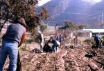 영월로터리 농촌 봉사 활동