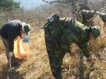 육군 일출부대 등산로 정화활동