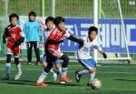 수원 NCC, U-9 '초대 챔피언' 등극