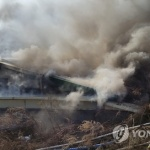 횡성 돼지농장서 불…새끼돼지 1천여 마리 폐사