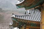 봄의 문턱 오봉산 자락에서 풍기는 기품 '청평사'