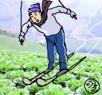 배추밭 정기