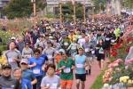 삼척시민 1200여명 평화통일 염원 달리기 물결