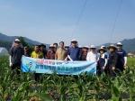 농협 평창군지부·대화농협 농가 일손돕기