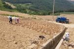 정선군 가뭄 장기화로 대책마련 착수