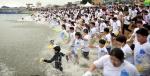 속초 오징어 맨손 잡기 축제