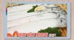 [TV 하이라이트] 여름바다 보양식 문어 VS 갈치