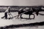 사진으로 만나는 강제이주 고려인의 역사