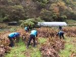 환경공단 강원지사 수확기 일손돕기
