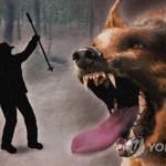 '사람 잡는 반려견' 주인 처벌 강화한다…동물보호법 개정 추진