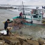 표류 어선 고성 거진 해변에 밀려나와…해경 응급조치