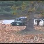 """""""北, 귀순사건 후 JSA 경비병력 모두 교체…지휘관 줄줄이 문책"""""""