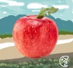 정선 사과