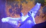 평창올림픽 자문단 평창오각의 문화올림픽 생생소식