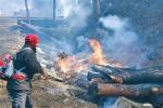 삼척 산불, 벌채목이 불쏘시개 역할했다