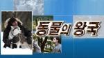 [설 연휴 TV 프로그램][18(일)] 하이에나에 대한 오해