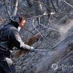 117㏊ 잿더미 만든 삼척산불…8일 만에 뒷불감시 활동도 마무리