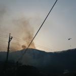 정선군 신동읍서 산불… 1시간 10분여 만에 진화