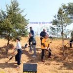 고성 통일전망대서 ' 남북 평화의 꿈' 심다