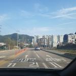 홍천군 도로명 노면 안내표기 사업 추진