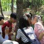 죽왕초교 학교숲 체험학습