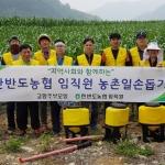 농협영월군지부·한반도농협 농촌일손돕기