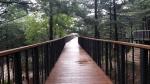 철원 '하늘 숲·땅 숲 체험길' 조성