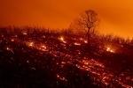 미 캘리포니아주 역대 두번째 큰 산불