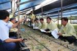 도의회 농림수산위 폭염 피해 농가 방문