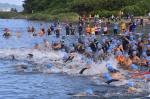 삼척 이사부장군배 바다수영대회