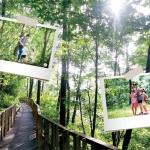 '자연이 만든 학원' 숲에서 몸과 마음 건강하게
