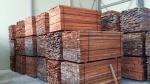 양양 기업체 호주 고급목재 '자라' 다량 수입