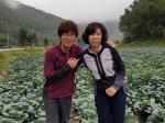 태백 김진복·신옥랑씨 부부 10월 ' 이달의 새농민상' 수상