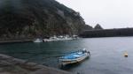 [동해안 어촌의 변신, 현장을 가다] 12. 일본 도쿠시마현 '이자리마을'