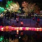 춘천불교방송 유등축제