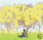 홍천 은행나무 숲