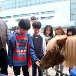 도농기원 강원진로박람회서 체험부스 운영