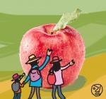 정선 사과축제