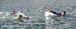 동해해양경찰서 바다수영 훈련