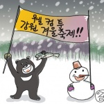 강원도의 겨울 축제