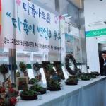 고한야생화마을 추리극장 추진단 다육아트전 개최