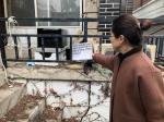 춘천 고양이마을 괴소문 확산