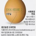 오래된 달걀 유통 차단…23일부터 달걀껍데기에 산란일자 표시