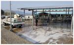 도내 가축시장 8곳 오늘 재개장