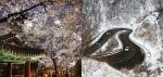 봄과 겨울