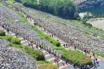 [알립니다] 소양강댐 용너미길 걷기대회